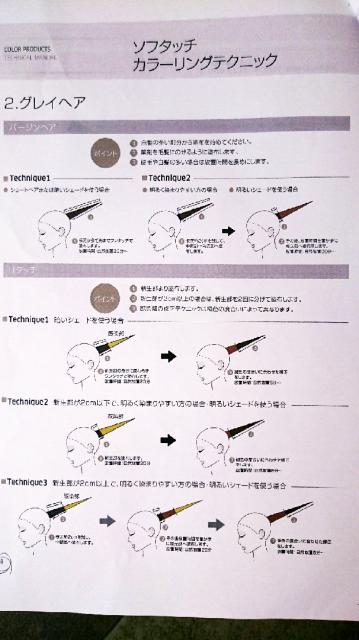 グレイヘアカラーテクニック画像
