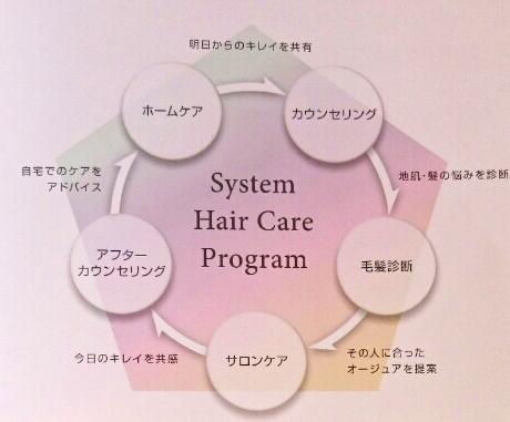 システムヘアケアプログラム画像