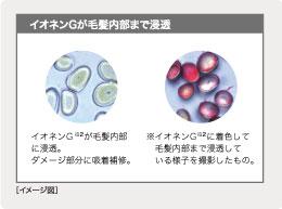 アミノ酸画像