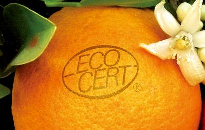 エコサートロゴ画像