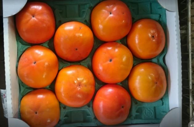 つくばゆりの郷「柿」画像