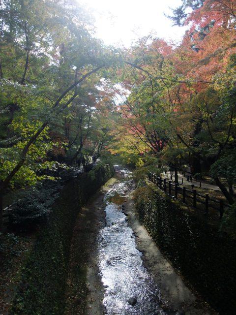箱根の山々画像