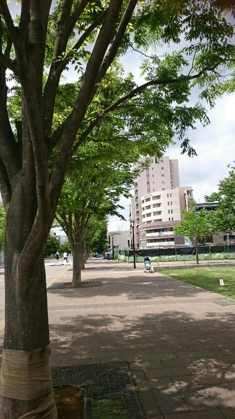 おおたかの森駅周辺の開発