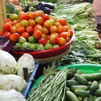 野菜などに多く含まれるビタミンA・ビタミンB群
